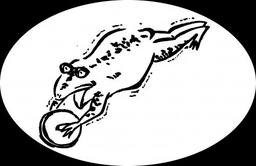 腹筋ローラー蛙