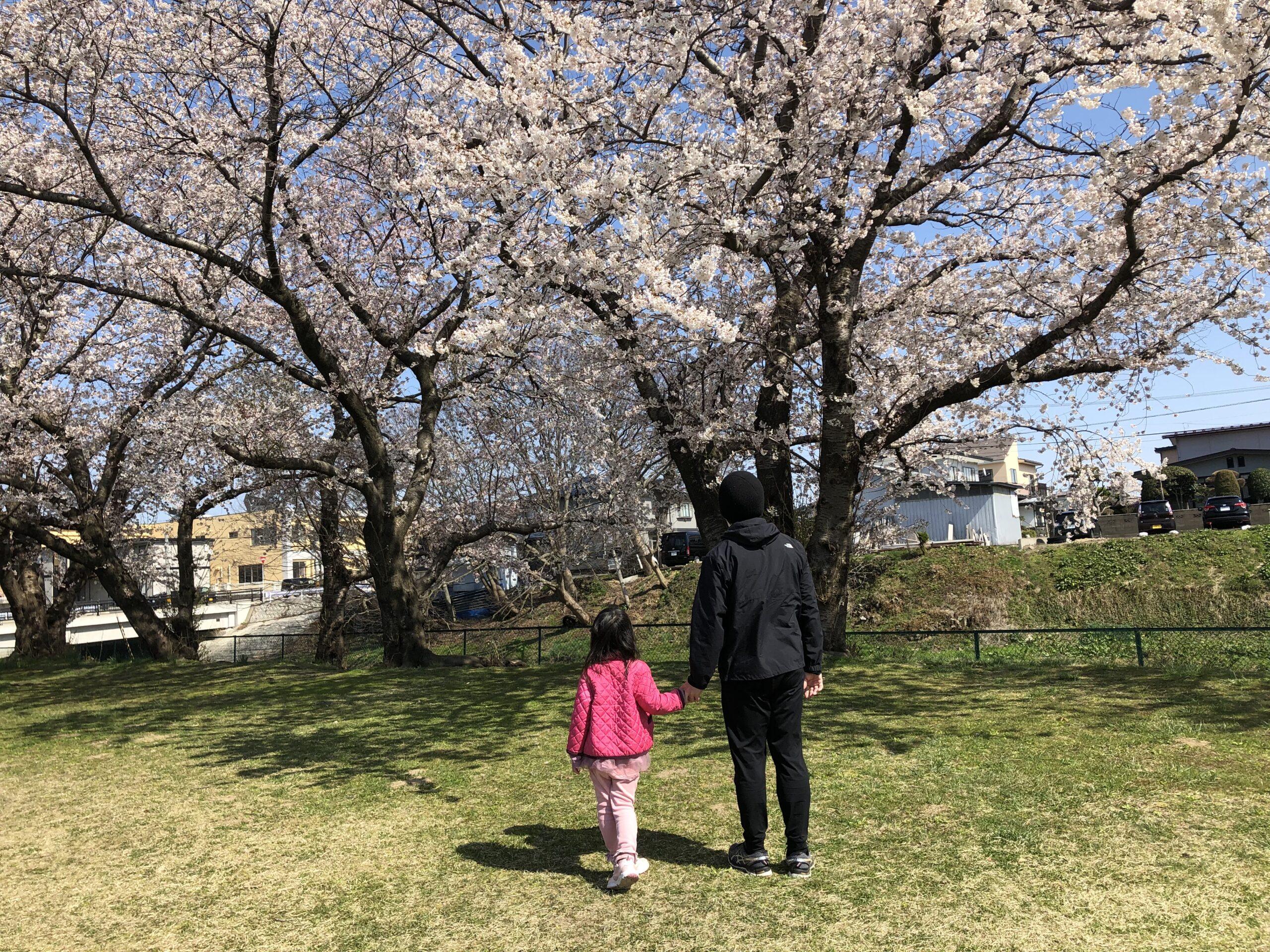 2021年お花見散歩